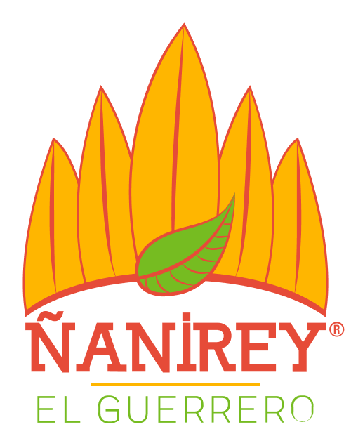 ñanirey, nanirey, ñanirey el guerrero, nanirey el guerrero, marca mexicana de flor de Jamaica, marca mexicana de botanas, nanirey el guerrero, ñanirey el guerrero.